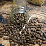 Arabica Coffee – The Sweet Story Of The World's Favorite Coffee Beans