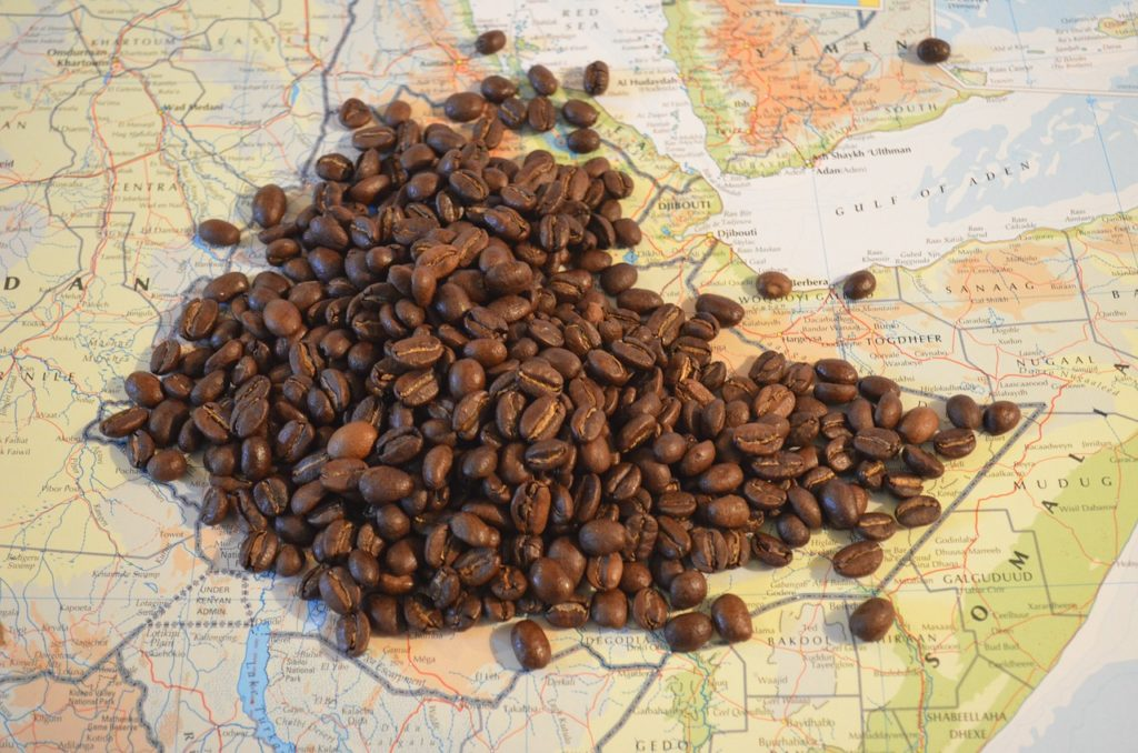 coffee ethiopian origin